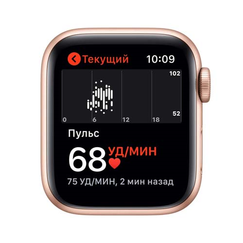 Apple Watch SE 44mm Gold Aluminium Case with Sport Band розовый 2